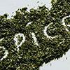 Классификация наркотических веществ